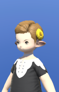 Model-Dried Yellow Oldrose-Male-Lalafell.png