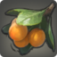 Ripe Steppe Fruit Icon.png