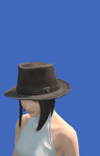 Model-Aesthete's Hat of Gathering-Female-Miqote.png