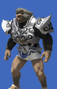 Model-Tarnished Body of the Silver Wolf-Male-Hrothgar.png
