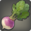 Steppe Radish Icon.png