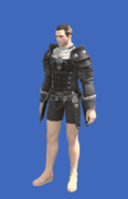 Model-Aurum Jacket-Male-Hyur.png