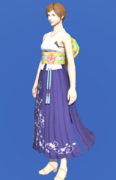 Model-High Summoner's Dress-Female-Hyur.png