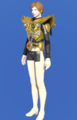 Model-The Body of the Golden Wolf-Female-Hyur.png