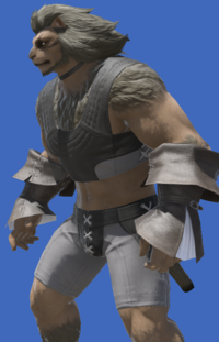Model-Acolyte's Halfgloves-Male-Hrothgar.png