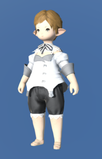 Model-Patrician's Coatee-Female-Lalafell.png