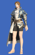 Model-Shikaree's Doublet-Male-Hyur.png