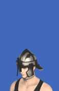 Model-Wolf Sallet-Male-Hyur.png