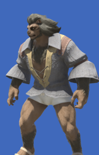 Model-Flame Private's Shirt-Male-Hrothgar.png