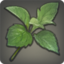 Fragrant Steppe Herb Icon.png