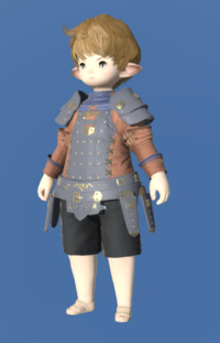 Model-Aetherial Raptorskin Jacket-Male-Lalafell.png