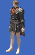 Model-Crystarium Tabard-Male-Hyur.png