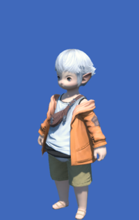 Model-Casual Jacket-Male-Lalafell.png