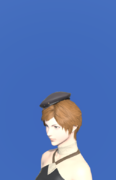 Model-Quaintrelle's Hat-Female-Hyur.png