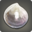 Unidentifiable Shell Icon.png