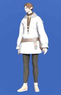 Model-Imperial Operative Dalmatica-Male-Elezen.png