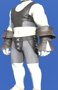 Model-Acolyte's Halfgloves-Male-Roe.png