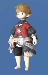 Model-Judge's Shirt-Male-Lalafell.png