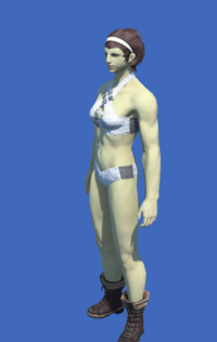 Model-Obsolete Android's Boots of Striking-Female-Roe.png