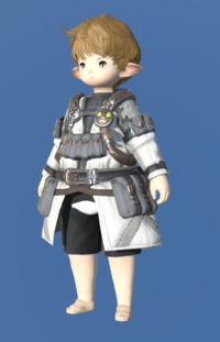 Model-Royal Volunteer's Gambison of Aiming-Male-Lalafell.png