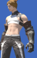 Model-Crystarium Gauntlets-Male-Miqote.png