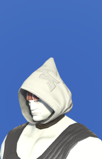 Model-Filibuster's Hood of Healing-Male-Roe.png