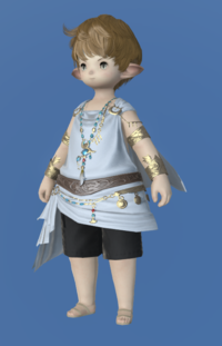 Model-Republican Medicus's Chiton-Male-Lalafell.png