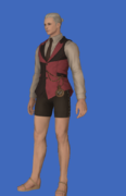 Model-Valentione Rose Waistcoat-Male-Hyur.png