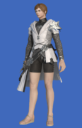 Model-Direwolf Tabard of Aiming-Male-Hyur.png