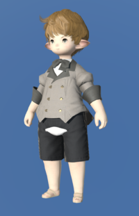Model-Linen Coatee of Gathering-Male-Lalafell.png