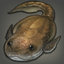 Bothriolepis Icon.png