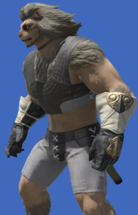 Model-Alexandrian Gloves of Scouting-Male-Hrothgar.png