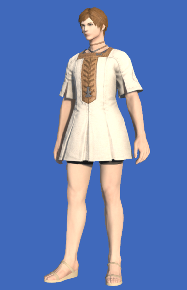Model-Cotton Tabard-Male-Hyur.png
