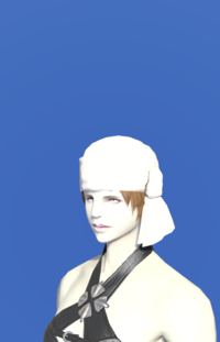 Model-Cotton Turban-Female-Roe.png