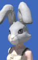 Model-Rabbit Head-Female-AuRa.png