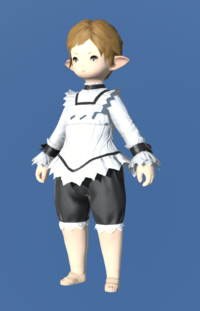 Model-Hannish Wool Autumn Shirt-Female-Lalafell.png