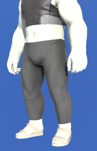 Model-Scion Chronocler's Tights-Male-Roe.png
