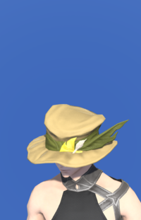Model-Augmented Fieldking's Hat-Male-Miqote.png