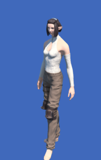 Model-Obsolete Android's Trousers of Striking-Female-Elezen.png
