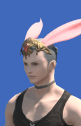 Model-Ruby Carbuncle Ears-Male-Hyur.png