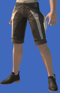 Model-Valentione Acacia Shoes-Male-Miqote.png