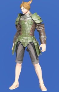 Model-Wood Wailer's Jacket-Male-Miqote.png