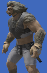 Model-Aetherial Boarskin Ringbands-Male-Hrothgar.png