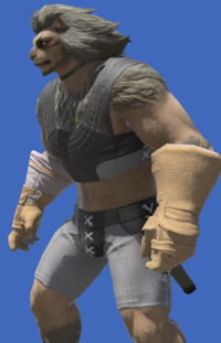 Model-Aetherial Felt Bracers-Male-Hrothgar.png