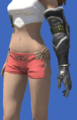 Model-Eikon Leather Armguards of Casting-Female-Viera.png