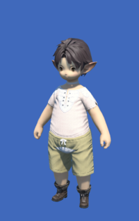 Model-Obsolete Android's Boots of Healing-Male-Lalafell.png