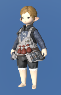 Model-Royal Volunteer's Gambison of Healing-Female-Lalafell.png