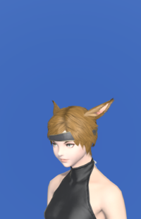 Model-Alliance Circlet of Casting-Female-Miqote.png