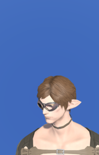 Model-Plundered Goggles-Male-Elezen.png