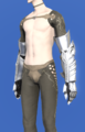 Model-The Hands of the Silver Wolf-Male-Elezen.png